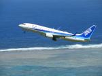 おっつんさんが、新石垣空港で撮影した全日空 737-881の航空フォト(写真)