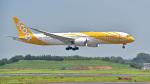 パンダさんが、成田国際空港で撮影したスクート 787-9の航空フォト(写真)