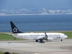 おっつんさんが、関西国際空港で撮影した全日空 737-881の航空フォト(写真)
