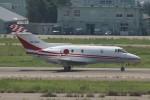 コギモニさんが、小松空港で撮影した航空自衛隊 U-125 (BAe-125-800FI)の航空フォト(写真)