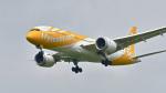 パンダさんが、成田国際空港で撮影したスクート 787-8 Dreamlinerの航空フォト(写真)