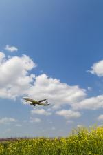 mameshibaさんが、成田国際空港で撮影したエアプサン A321-231の航空フォト(写真)