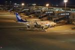 m_aereo_iさんが、中部国際空港で撮影した全日空 737-881の航空フォト(写真)
