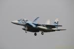 湖景さんが、茨城空港で撮影した航空自衛隊 F-15DJ Eagleの航空フォト(写真)