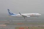 Re4/4さんが、新千歳空港で撮影した全日空 737-881の航空フォト(写真)