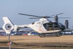 mameshibaさんが、成田国際空港で撮影した森ビルシティエアサービス EC135T2+の航空フォト(写真)