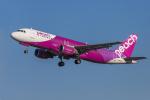 mameshibaさんが、成田国際空港で撮影したピーチ A320-214の航空フォト(写真)