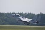 ひこ☆さんが、千歳基地で撮影した航空自衛隊 F-15DJ Eagleの航空フォト(写真)