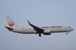 神宮寺ももさんが、成田国際空港で撮影した日本航空 737-846の航空フォト(写真)