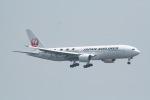 うたさんが、羽田空港で撮影した日本航空 777-246の航空フォト(写真)