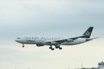 うたろうさんが、成田国際空港で撮影したルフトハンザドイツ航空 A340-313Xの航空フォト(写真)