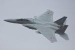 おぺちゃんさんが、新田原基地で撮影した航空自衛隊 F-15DJ Eagleの航空フォト(写真)