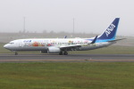 funi9280さんが、新千歳空港で撮影した全日空 737-881の航空フォト(写真)