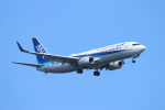 ceskykrumlovさんが、羽田空港で撮影した全日空 737-881の航空フォト(写真)
