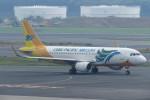SFJ_capさんが、成田国際空港で撮影したセブパシフィック航空 A320-214の航空フォト(写真)