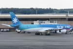 SFJ_capさんが、成田国際空港で撮影したエア・タヒチ・ヌイ A340-313Xの航空フォト(写真)