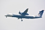 アルビレオさんが、成田国際空港で撮影したオーロラ DHC-8-402Q Dash 8の航空フォト(写真)