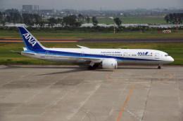 kumagorouさんが、仙台空港で撮影した全日空 787-9の航空フォト(飛行機 写真・画像)