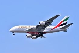 Hiro Satoさんが、スワンナプーム国際空港で撮影したエミレーツ航空 A380-842の航空フォト(飛行機 写真・画像)