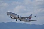 ぬま_FJHさんが、関西国際空港で撮影した日本航空 737-846の航空フォト(写真)