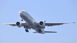 誘喜さんが、アタテュルク国際空港で撮影したターキッシュ・エアラインズ 777-36N/ERの航空フォト(写真)