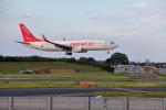 VEZEL 1500Xさんが、成田国際空港で撮影したイースター航空 737-8Q8の航空フォト(写真)