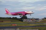 VEZEL 1500Xさんが、成田国際空港で撮影したピーチ A320-214の航空フォト(写真)