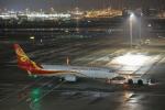 VEZEL 1500Xさんが、羽田空港で撮影した海南航空 737-84Pの航空フォト(写真)