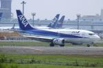 NANASE UNITED®さんが、成田国際空港で撮影したANAウイングス 737-54Kの航空フォト(写真)