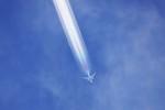 A350XWB-HNDさんが、千歳基地で撮影した全日空 787-9の航空フォト(写真)