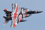 sepia2016さんが、茨城空港で撮影した航空自衛隊 F-15DJ Eagleの航空フォト(写真)