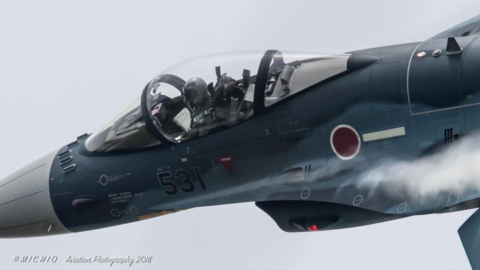 michioさんの航空自衛隊 Mitsubishi F-2A (53-8531) 航空フォト