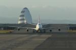 宮崎 育男さんが、羽田空港で撮影したカンタス航空 747-438の航空フォト(写真)