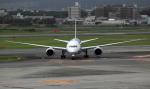 CL&CLさんが、伊丹空港で撮影した全日空 787-8 Dreamlinerの航空フォト(写真)
