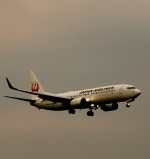 ザキヤマさんが、熊本空港で撮影した日本航空 737-846の航空フォト(写真)