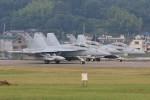 マリオ先輩さんが、横田基地で撮影したアメリカ海軍 EA-18G Growlerの航空フォト(写真)