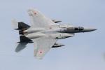 チャッピー・シミズさんが、茨城空港で撮影した航空自衛隊 F-15J Eagleの航空フォト(写真)