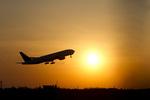 しゅあさんが、成田国際空港で撮影したユナイテッド航空の航空フォト(写真)
