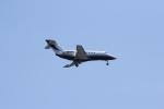 しゃこ隊さんが、ジョン・F・ケネディ国際空港で撮影したレイセオン・エアクラフト Hawker 800の航空フォト(写真)