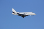 しゃこ隊さんが、ジョン・F・ケネディ国際空港で撮影したネットジェッツ・エイビエーション Falcon 2000の航空フォト(写真)