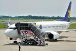 うめやしきさんが、茨城空港で撮影したスカイマーク 737-8ALの航空フォト(飛行機 写真・画像)