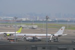 hirokongさんが、羽田空港で撮影したドイツ空軍 A340-313Xの航空フォト(写真)