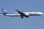 しゃこ隊さんが、ジョン・F・ケネディ国際空港で撮影した全日空 777-381/ERの航空フォト(写真)