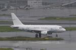 たまさんが、羽田空港で撮影したGCLポリー・エナジー・ホールディングス A318-112 CJ Eliteの航空フォト(写真)