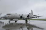 ちゃぽんさんが、横田基地で撮影した海上自衛隊 P-3Cの航空フォト(写真)