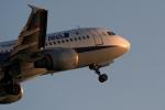Polarisさんが、大館能代空港で撮影した全日空 A320-211の航空フォト(写真)