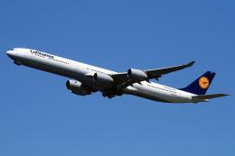 航空フォト:D-AIHD ルフトハンザドイツ航空 A340-600