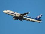 garrettさんが、羽田空港で撮影した全日空 A320-211の航空フォト(写真)