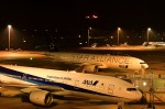 Dojalanaさんが、羽田空港で撮影した全日空 777-281の航空フォト(写真)