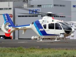 ミルハスさんが、東京ヘリポートで撮影したオールニッポンヘリコプター EC135T2の航空フォト(飛行機 写真・画像)